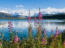 06ak-3150-summit-lake-alaska-range