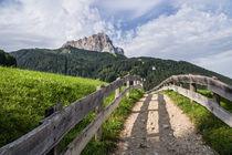 Idyllic path, Selva Gardena/Wolkenstein, Dolomites by Tom Dempsey