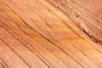 Navajo Sandstone line pattern, Vermilion Cliffs by Tom Dempsey