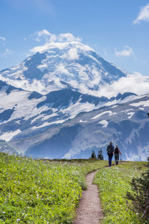 Mount Baker Wilderness, Washington, USA. by Tom Dempsey