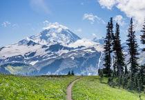 Mount Baker Wilderness, Washington, USA. by Tom Dempsey