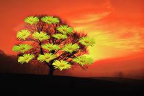 Blütenbaum by Barbara  Keichel