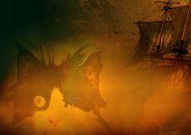 Henry der Piratenkater von Wolfgang Schwerdt