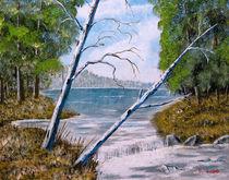 Birch-falls