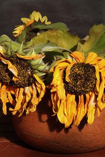 Vase mit Sonnenblumen. by pichris