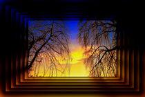 Blattlos-01-r6-sun-cl