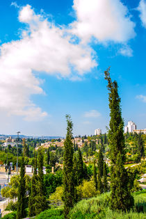 View of Jerusalem from old city by slavamalai