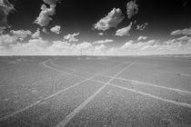Tracks crossing by Schoo Flemming