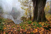Cottage on the water in autumn by Zoltan Duray