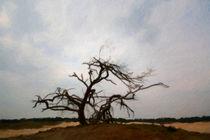 cripple tree von Noémi Giteau