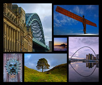Northumbrian Landmarks by David Pringle