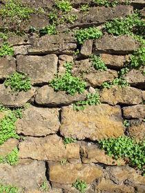 Natursteinmauer by Heike Rau