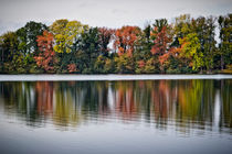 Herbst am See by Beate Zoellner