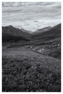Tundra Valley by Priska  Wettstein