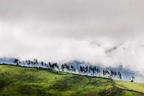 Cuzco Region, Peru. von Tom Hanslien