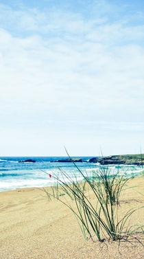 Asturias beach by Christian Hansen