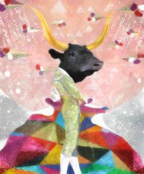 Bull Matador by Steve Moors