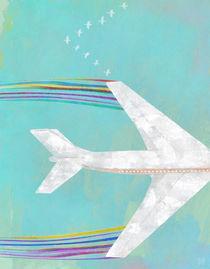 Plane-geese-by-steve-moors