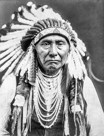 Chief Joseph Nez Perce von Vincent Monozlay
