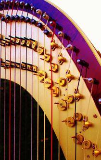 Harp-Harfe by Michael Beilicke