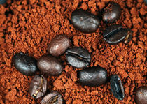 Java Grinds by John Rizzuto