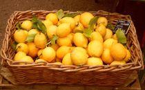 Basketful of Lemons. by Heather Goodwin