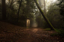 Hansel and Gretel von Jorge Maia
