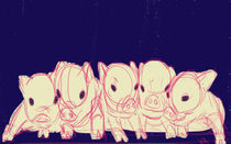 Piglets by Whitney Alexander