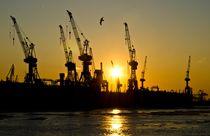 Kräne am Hamburger Hafen von caladoart