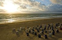 Strandkörbe in der Abendsonne von caladoart