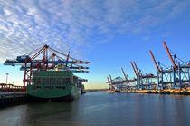 Beladung eines Containerschiffs by caladoart