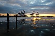 Sonnenuntergang in der gefrorenen Elbe von caladoart