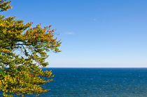 Ruhige See von caladoart
