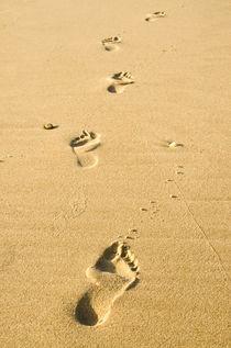 Einsame Fußspuren im Sand von caladoart