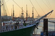 Segelschiff im Hamburger Hafen von caladoart