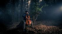 Silent Cello von Ben Bürkle