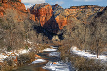 Winter in Zion National Park, USA by Douglas Pulsipher