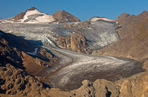 Blinnenhorn und Griesgletscher, Wallis, Schweiz  by gfc-collection