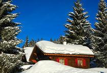 Tiefverschneites Blockhaus, Schweiz von gfc-collection