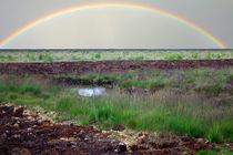 Rainbow by Licht und Mystik des Nordens