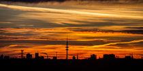 Panorama Hamburg bei Sonnenaufgang von Dennis Stracke