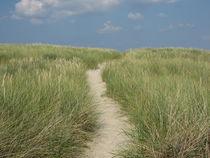 Weg zum Strand von Susanne Winkels