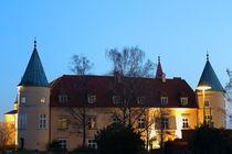 Schloss St.Martin von robert-boss