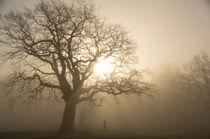 Jogger im Nebel von Angela Dieckmann