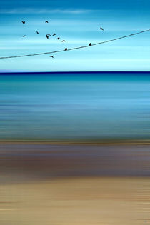 CRETAN SEA & BIRDS II by Pia Schneider