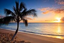 Maui Sunset by Dominik Wigger