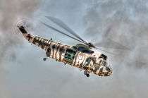 Sea King in Arctic Camouflage von Steve H Clark Photography