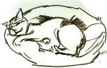 sleeping lucky cat by Cornelia Papendick