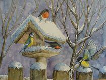 Vögel im Winter von Sabine Sigrist