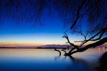 Nach dem Sonnenuntergang an der Elbe von Dennis Stracke
